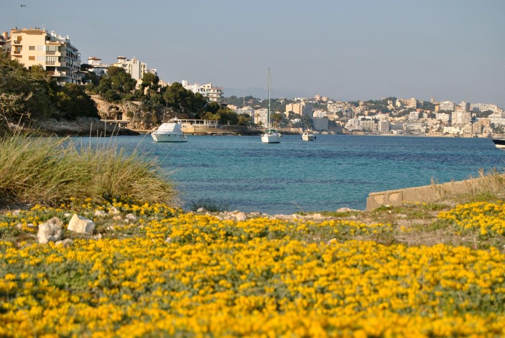 Illetes ( Mallorca) foto propia: un lugar que inspira relax